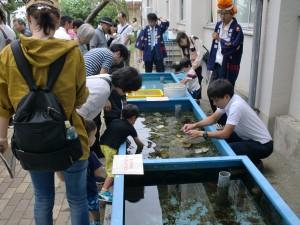 長高水族館④